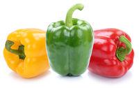 Paprika Paprikas bunt Gemüse Freisteller freigestellt isoliert