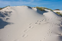 White dune landscape with footprints