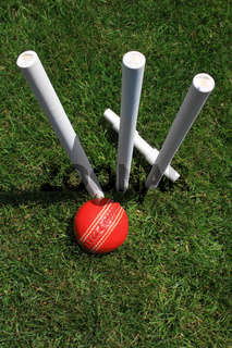 Cricket Stumps, Bail and Ball