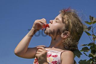 Mädchen erntet Johannisbeeren