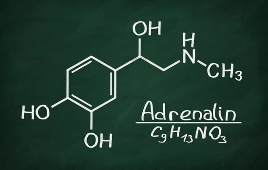 Structural model of Adrenalin