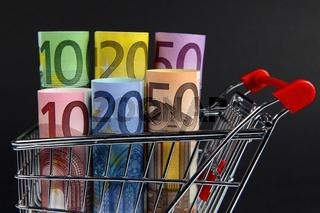 Mini shopping cart with euro bills