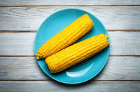 boiled corn on blue plate on white wooden background
