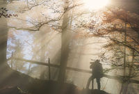 Silhouette of a man under sun rays in autumn colors