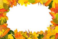 Viele Herbstblätter als Rahmen