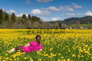 Brunette woman lies on a field of yellow dandelion.