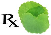 Thankuni leaves as medicine