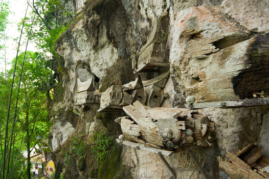 Hanging Graves Bones Tana Toraja Burial