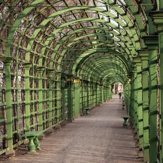Scenic green arcs in Summer Garden Saint Petersburg