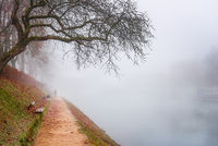 Path in autumn mist along the river