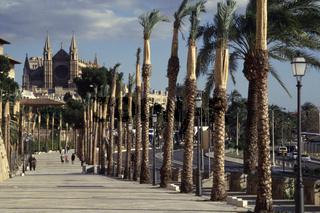 Palma de Mallorca. Kathedrale 001