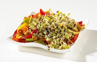 Gemischter Salat mit Sprossen
