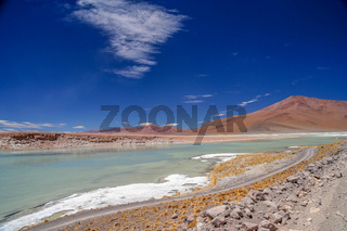 Altiplano hot springs