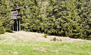 Jagdsitz am Waldrand hide