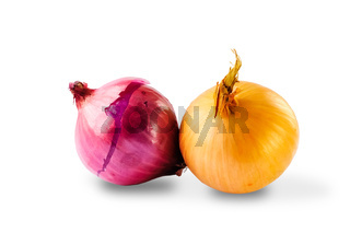 Couple of Onions