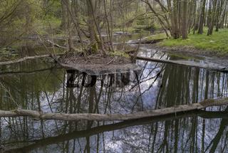 Natuerliche Flusslandschaft