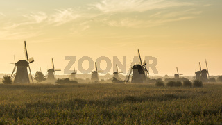 Kinderdijk in the morning with fog