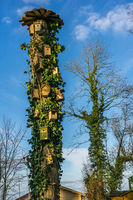 An old tree with many bird houses in sunshine and blue sky