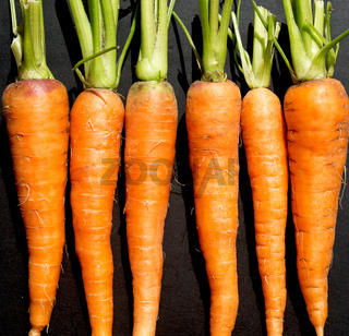 raw ripe carrots