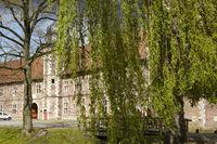moated castle Raesfeld - weeping willow