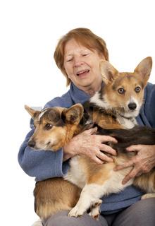 senior lady with her Corgi puppies