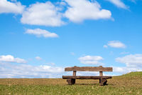Empty wooden bench in the park