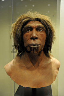 Bueste eines Neandertalers im Museum fuer Naturkunde in Berlin