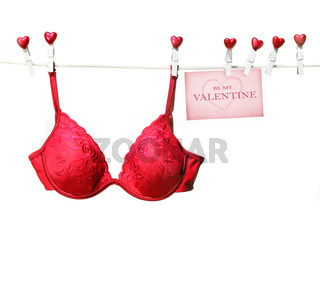 Fancy red bra hanging on clothesline