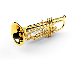 trumpet on the white