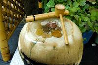 Purification Ladle