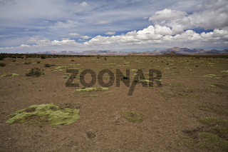 Berglandschaft im Lauca Nationalpark, Chile, Suedamerika, Mountain landscape at national park Lauca, Chile, South America