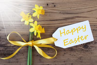 Sunny Spring Narcissus, Label, Text Happy Easter