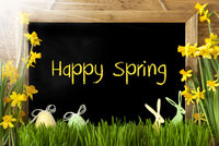 Sunny Narcissus, Easter Egg, Bunny, Text Happy Spring