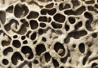 Rock erosion holes in the sea wall