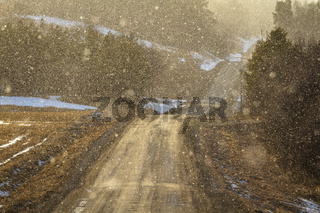 Light shines through snowy weather on a curved country road, backlit snow particles