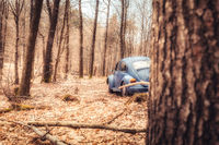 Old Beetle parking in a forest near Trippstadt