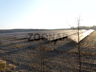Photovoltaikfeld auf einer Wiese