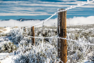 Landscape with hoarfrost on the fence