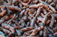 Bunch Of Boorish Carrot Roots On The Market