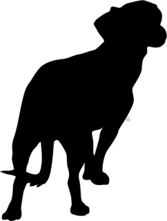 Toy Fox terrier dog silhouette on a white background