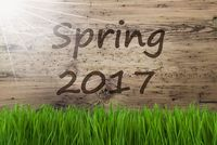 Sunny Wooden Background, Gras, Text Spring 2017