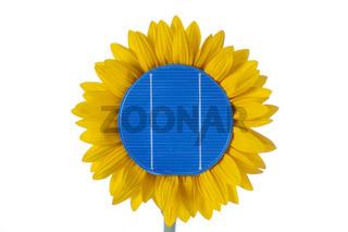 Sonnenblume mit Solarzelle als Symbol für Energiewende