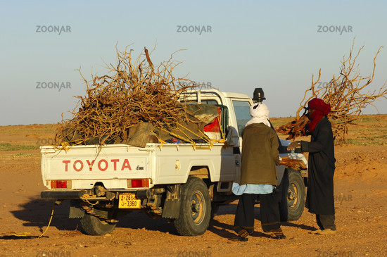 Firewood transport in the Sahara