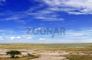An der mit Wasser gefüllten Etosha-Pfanne Namibia; Etosha-Pan with water, Namibia