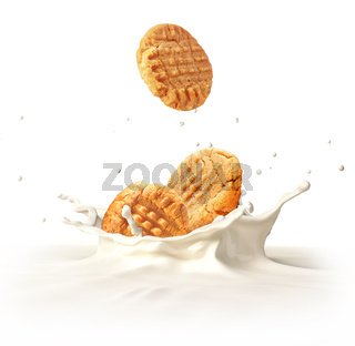 Two cookies biscuits falling into milk splashing.