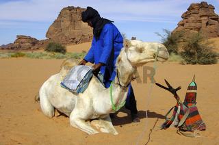 Tuareg Nomaden beim Satteln