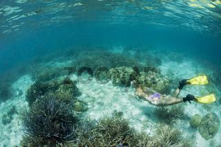 Korallenriff und Schnorchlerin, Mikronesien, Palau, Snorkeling at shallow Coral Reef, Micronesia