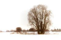 Winter 2009/2010 in Canitz