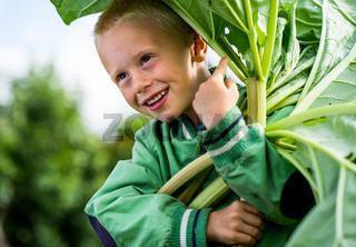 Little jouful boy with Rhubarb
