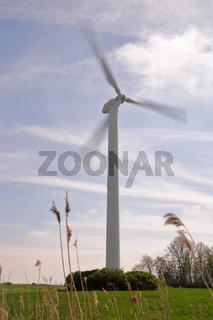 Windkraft und Natur